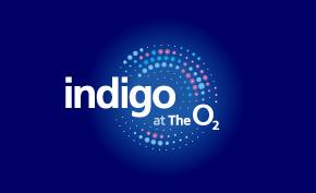 Indigo_Default_Grid_290x177.jpg