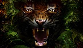 Jungle-Mania-tickets-event-listing-grid.jpg